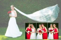 Sample Spread bride and bridesmaids