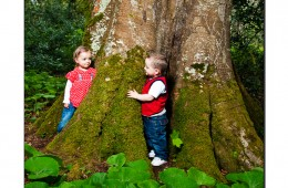 small children playing in the forest