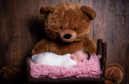 newborn photography sligo baby girl and bear
