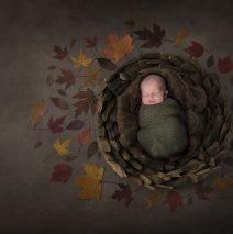 newborn photography sligo autumn photo