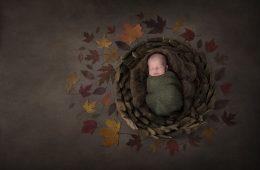 newborn photography sligo autumn photo